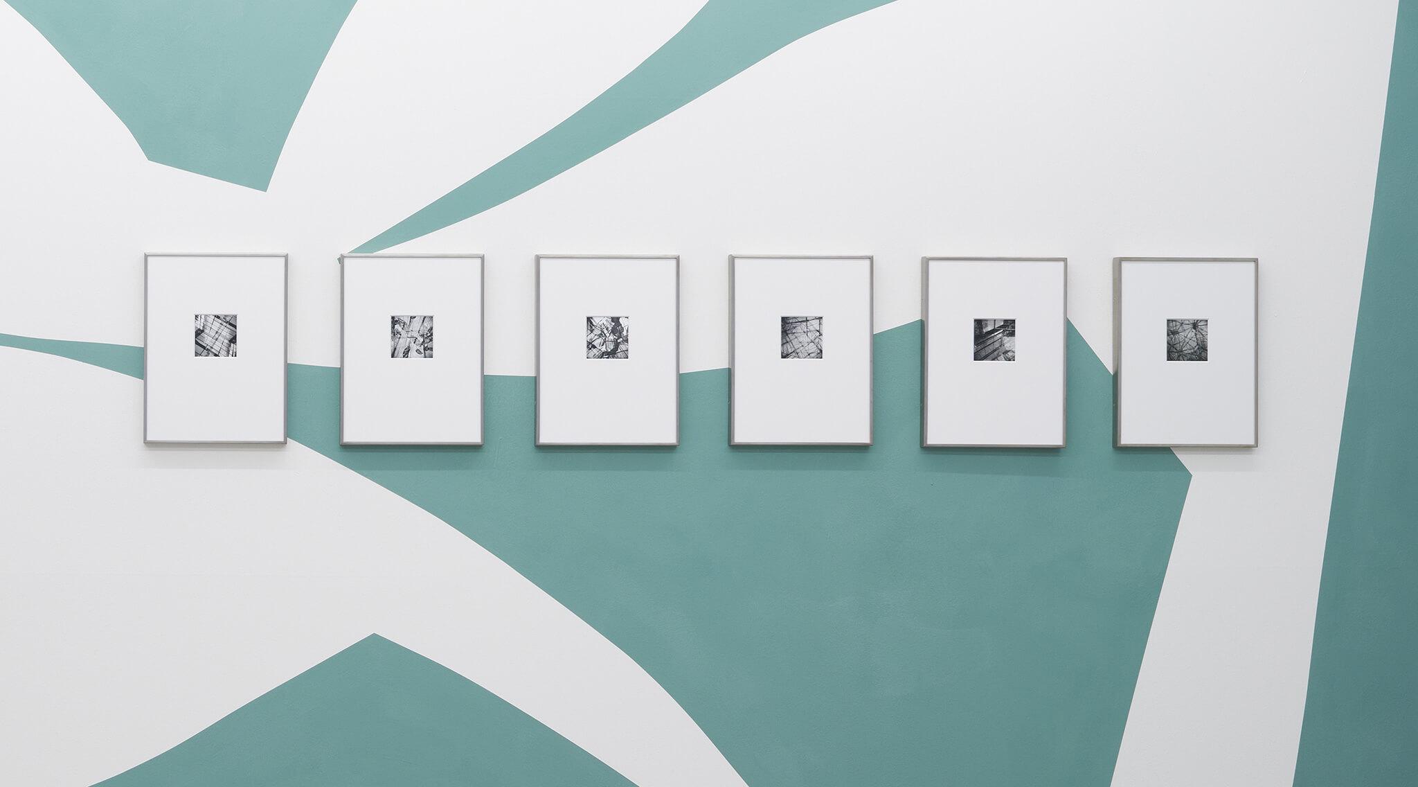 121_Frauke-Dannert_Collage_Ausstellung_Wandmalerei_botanicals_Rupert-Pfab-Düsseldorf_-2017