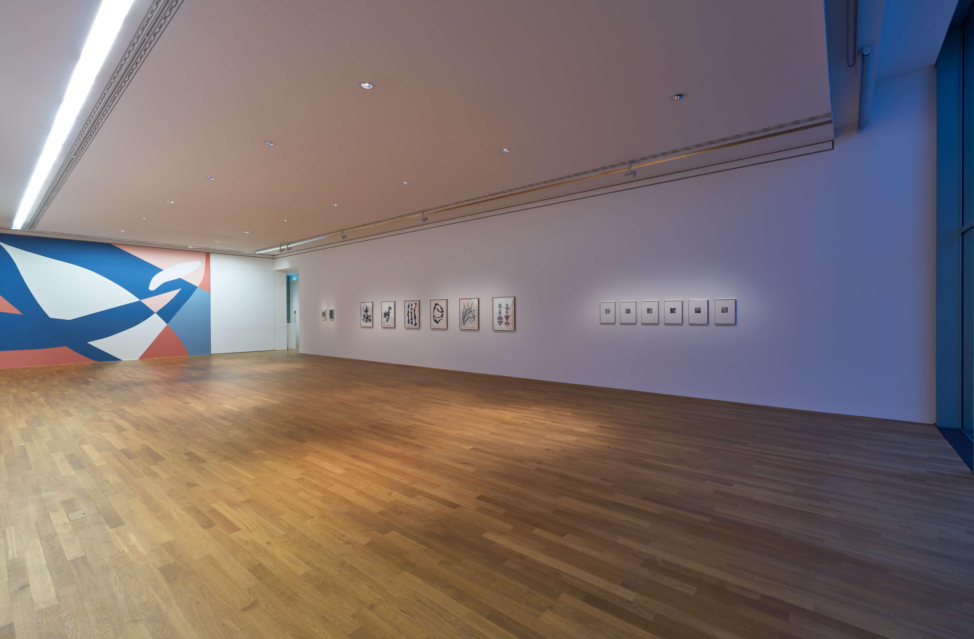 20181024_Installation_Frauke Dannert_0037 Kopie